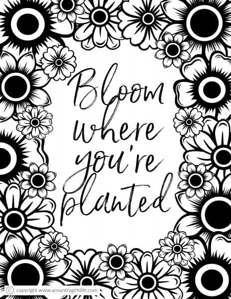 Free Printable Adult Coloring Pages Quot Floral Inspiration